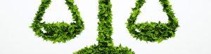 Diritto di accesso ambientale
